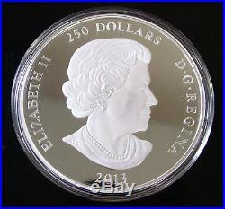 2013 $250 Kilo 99.99% Pure Silver Coin Canadas Arctic Landscape Box COA