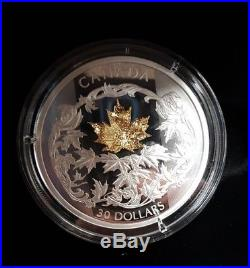 2018 $30 Golden Maple Leaf 2oz Pure Silver Coin #877of 2750 Minted
