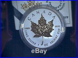 2019 40th Anniversary of Gold Maple Leaf $20 1oz Pure Silver Coin