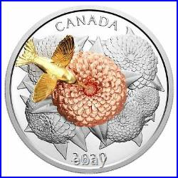 5 oz. Pure Silver Coin The Hummingbird and the Bloom Mintage 1,250 (2020)
